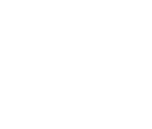 White Label Consultancy Logo White // Privacy and Data Protection // Strategic Advice